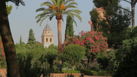 Spain-Andalucia-Alhambra-flowers-and-tower