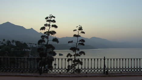Spain-Andalucia-Nerja-pom-pom-branches-by-balcony-6a