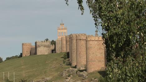 Avila-Spain-walls-and-tree