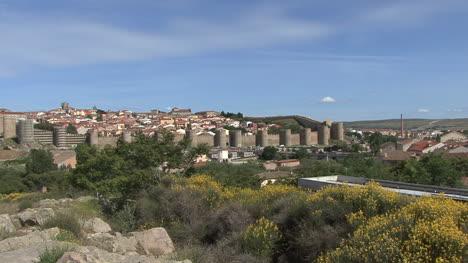 Avila-Spain-walls-and-flowers-zooms-in