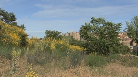 Avila-Spain-walls-and-yellow-flowers-distant