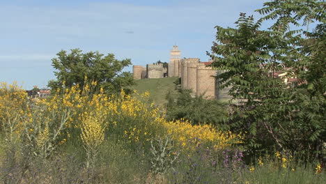 Avila-Spain-walls-and-yellow-flowers-zooms-in