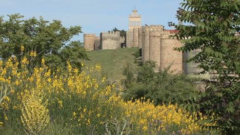 Avila-Spain-walls-and-yellow-flowers