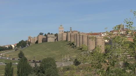 Avila-Spain-walls-with-branch
