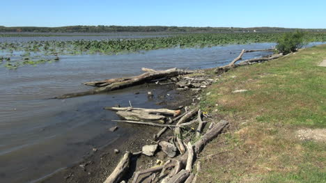 Illinois-Mississippi-River-with-driftwood