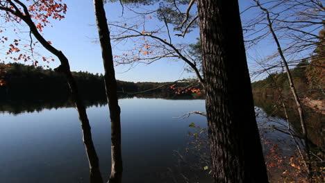 Massachusetts-Walden-Pond-&-trees-cx
