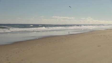 Salisbury-Beach-MA-gulls-fly