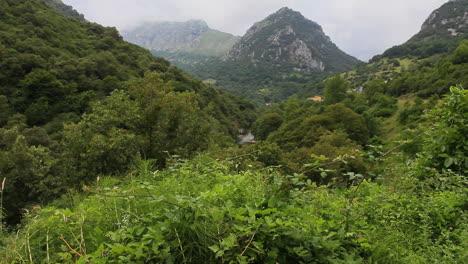 Spain-Cantabrian-peak-and-ridge-1-c