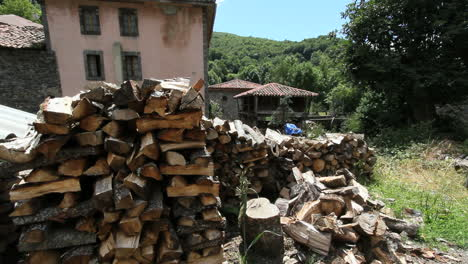 Spain-Castile-Soto-de-Sajambre-wood-pile-and-horreos
