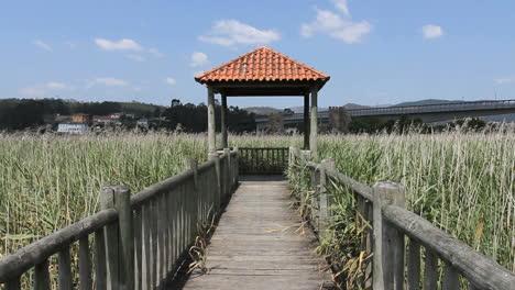 Spain-Galicia-Ria-wildlife-viewing-stand