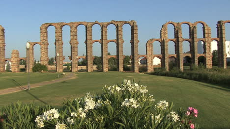 Merida-Aqueduct-of-the-Miracles-flowers