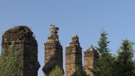 Spain-Merida-aqueduct-and-storks-zoom-in-2