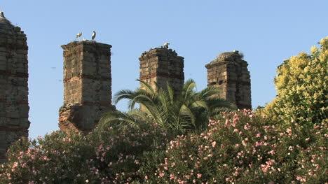 Spain-Merida-aqueduct-and-storks-4