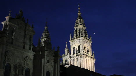 Santiago-night-cathedral-and-bird