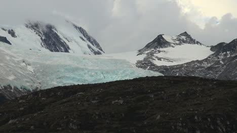 Patagonia-Beagle-Channel-Glacier-Alley-birds