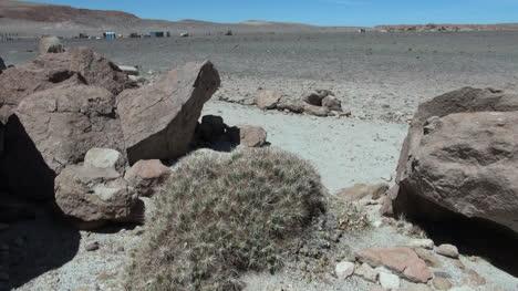 Chile-Atacama-rock-furry-with-cactus-10