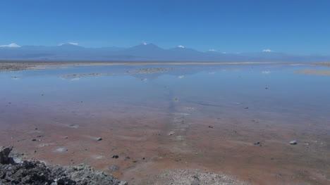Chile-Laguna-De-Atacama-Chaxa-Refleja-Montañas18