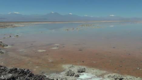 Chile-Atacama-Laguna-Chaxa-still-pastel-shallows-19