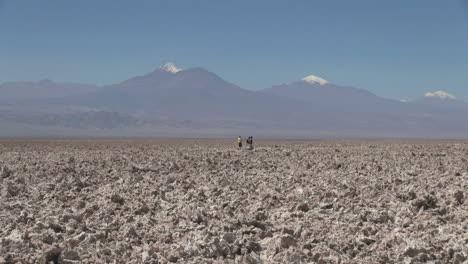 Chile-Atacama-Laguna-Chaxa-clumpy-texture-salt-flat-28