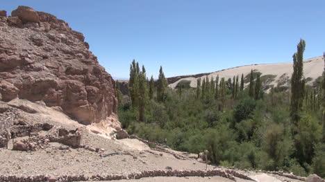 Chile-Atacama-Valle-de-Jere-rock-and-poplars-3