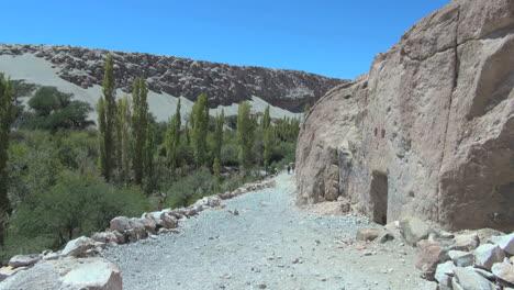 Chile-Atacama-Valle-de-Jere-s5