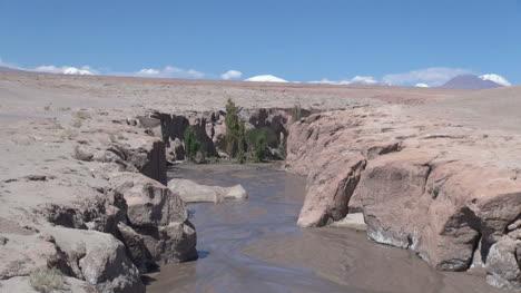 Chile-Atacama-stream-at-Toconao