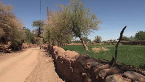Atacama-oasis-road