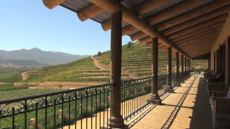 Chile-Winery-gallery-and-vineyards-editorial