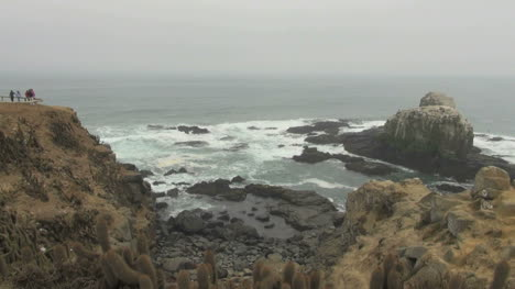 Chile-Punta-Lobos-view-of-island-and-waves