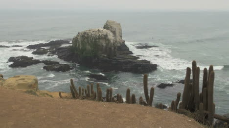 Chile-Offshore-rock-at-Punta-Lobos