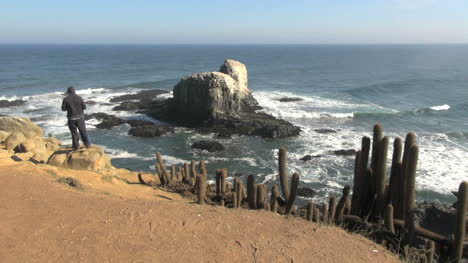 Chile-A-man-in-a-hoodie-at-Punta-Lobos