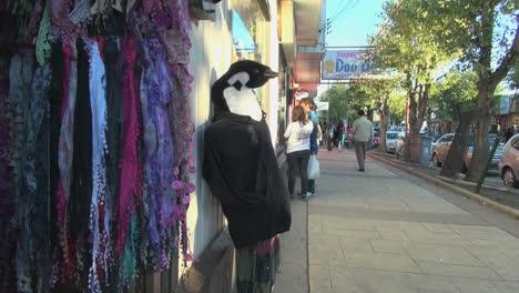 Patagonia-Puerto-Natalas-penguin-sign-&-sidewalk