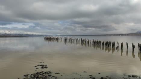 Puerto-Natales-birds-on-posts-zooms-s2