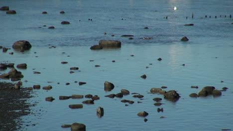 Puerto-Natales-ducks-and-rocks-s