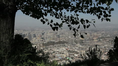Santiago-city-view-and-leaves