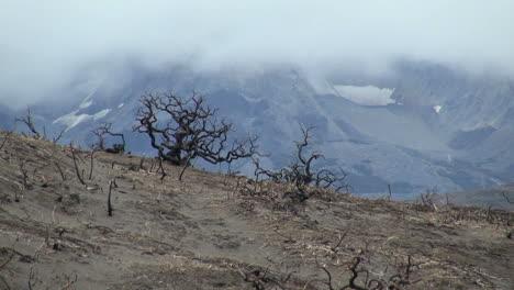 Torres-del-Paine-burn-s6