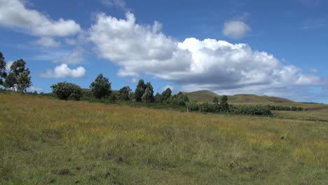 Easter-Island-Ahu-Akivi-grassy-landscape-4a