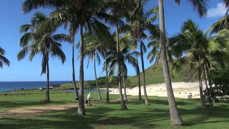 Easter-Island-Anakena-shady-palm-grove-stroll-2b