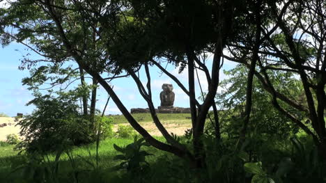 Easter-Island-Anakena-Ahu-Ature-Huke-through-tree-8