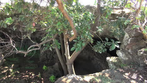 Easter-Island-jagged-cave-entrance-and-trees-1a