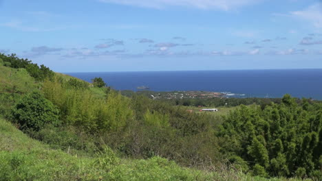 Easter-Island-Puna-Pau-view-over-tree-lined-slopes-9a