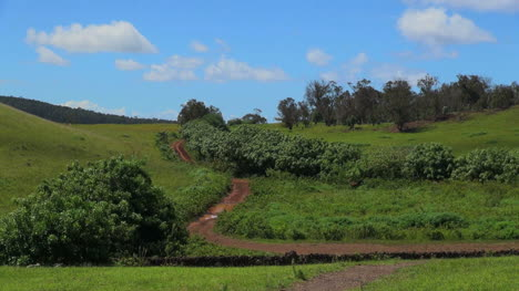 Easter-Island-Puna-Pau-lush-green-and-dirt-road-15