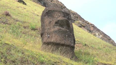 Rapa-Nui-Moai-head-at-Quarry