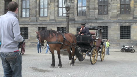 Netherlands-Amsterdam-horse-drawn-carriage-dam-square