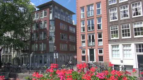 Amsterdam-flowers-&-houses
