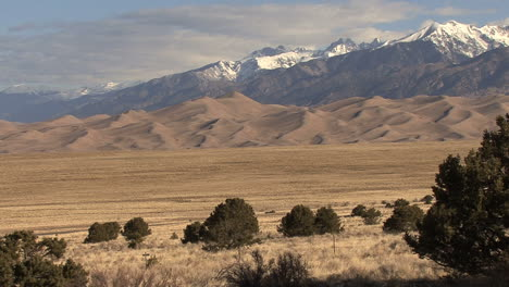 Colorado-Great-Sand-Dunes-with-trees