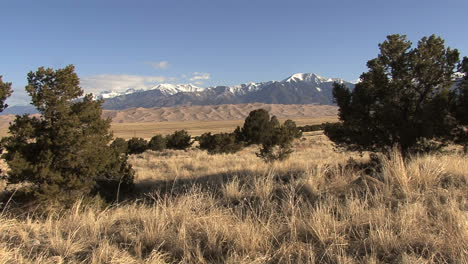 Colorado-Great-Sand-Dunes-with-grasses