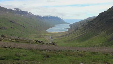 Islandia-Mjoifjordur-Fiordo-Desde-Arriba