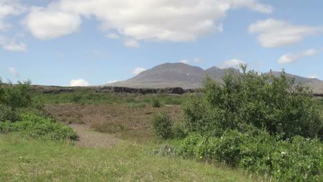 Iceland-Pingvellir-cliff-shrub-and-hill