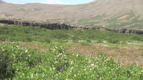 Iceland-Pingvellir-cliff-zoom-in